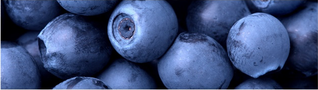 juicy blueberries.png